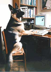 GSD Typing