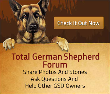 German Shepherd Story Page - German Shepherd Stories