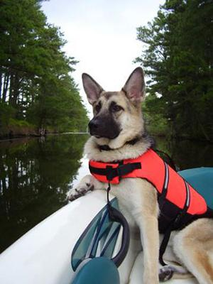Our First Mate