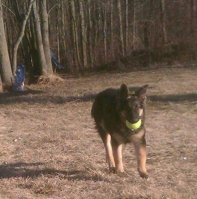 Playin ball with Momma!