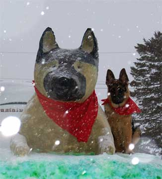 GSD in snow