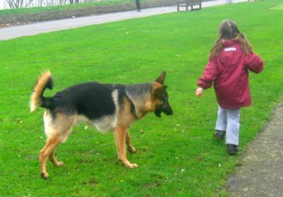 My granddaughter with her GSD friend