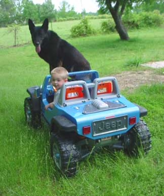 Black German Shepherd with boy